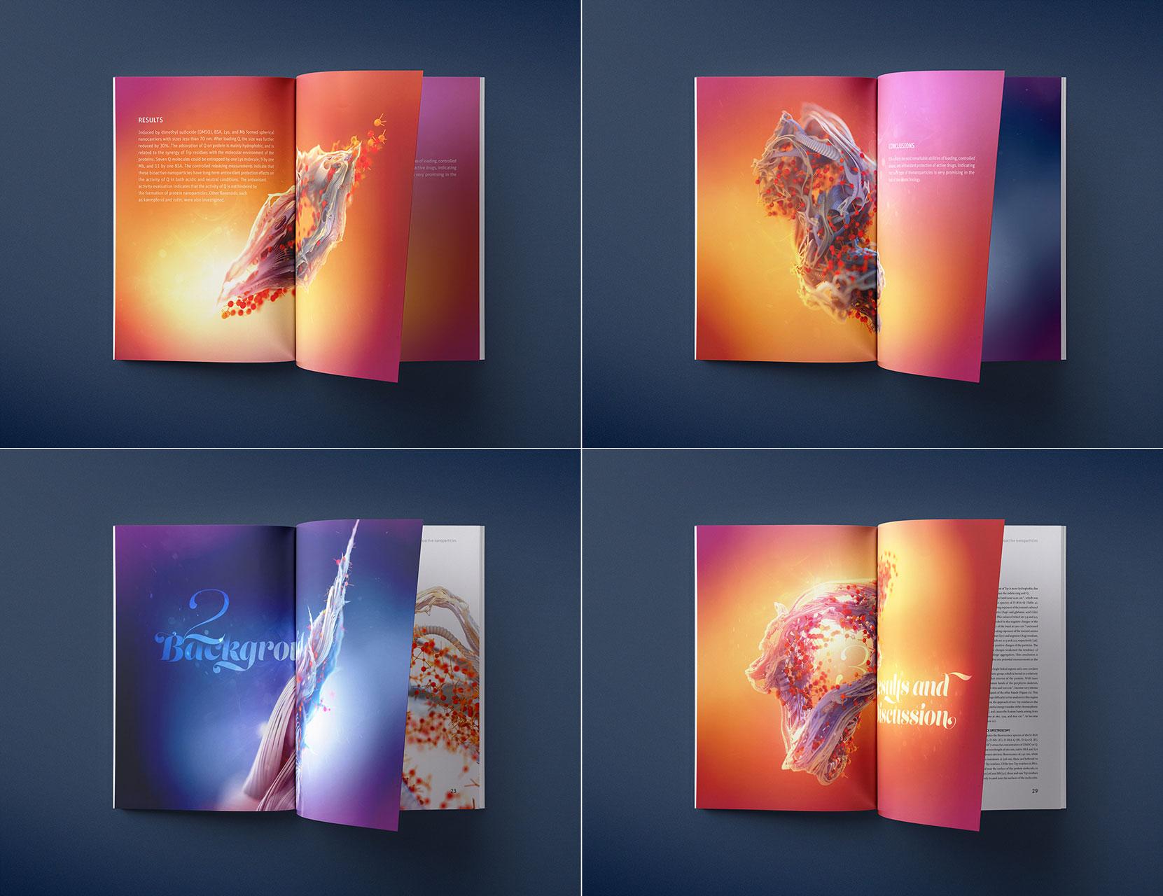 science-report-protein-quercetin-brochure