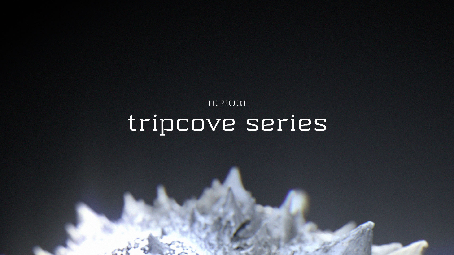 tripcove-series-intro